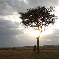 Find out more about the Kenyan Region and our Kenyan camps